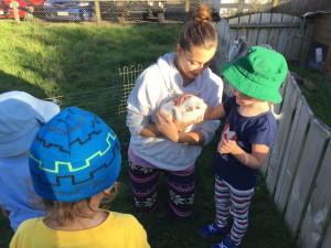 Sadie patting Pinky at the farm.